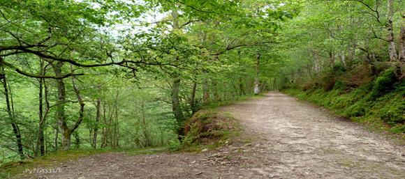Ruta rio Infierno 2